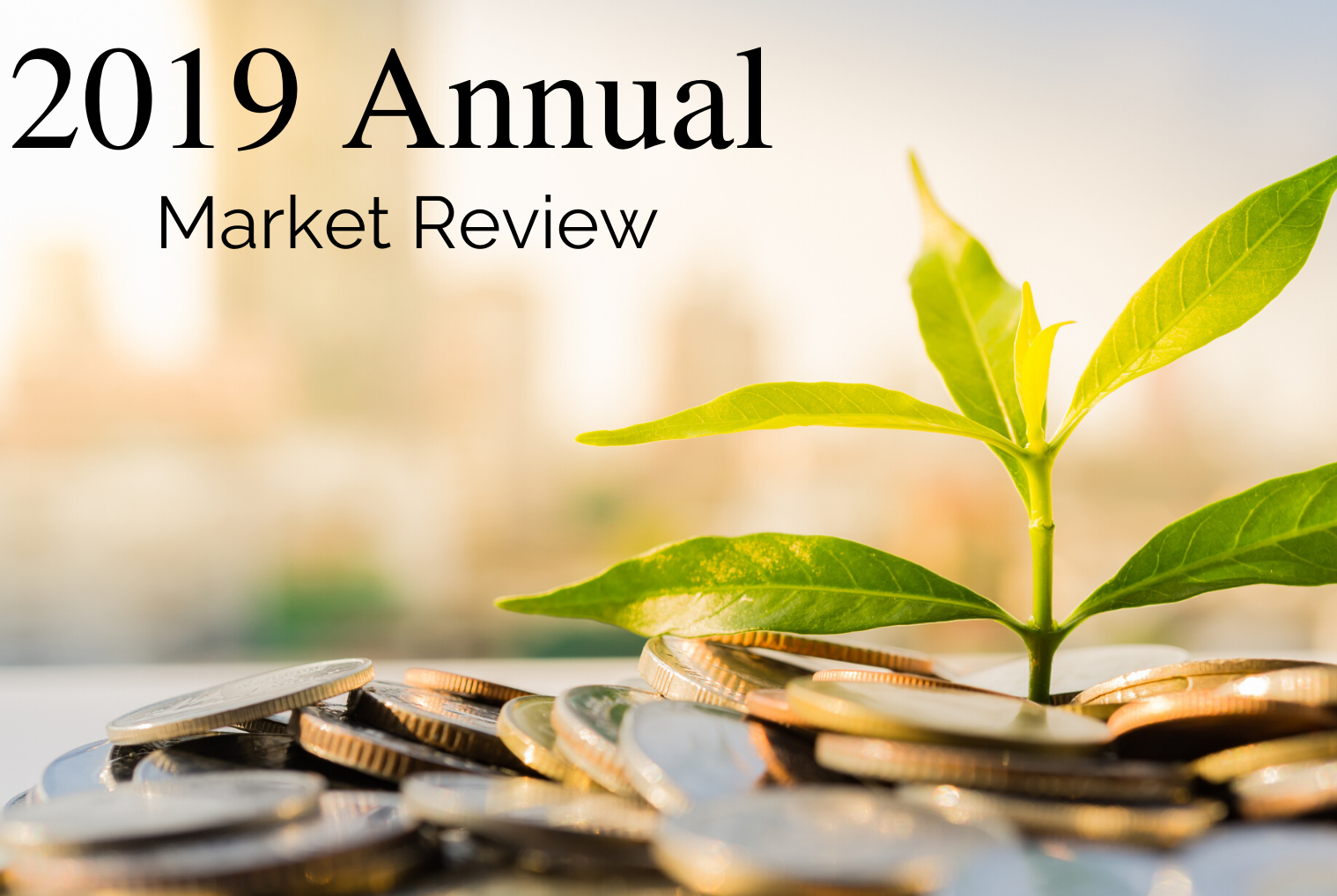 2019 Annual Market Review