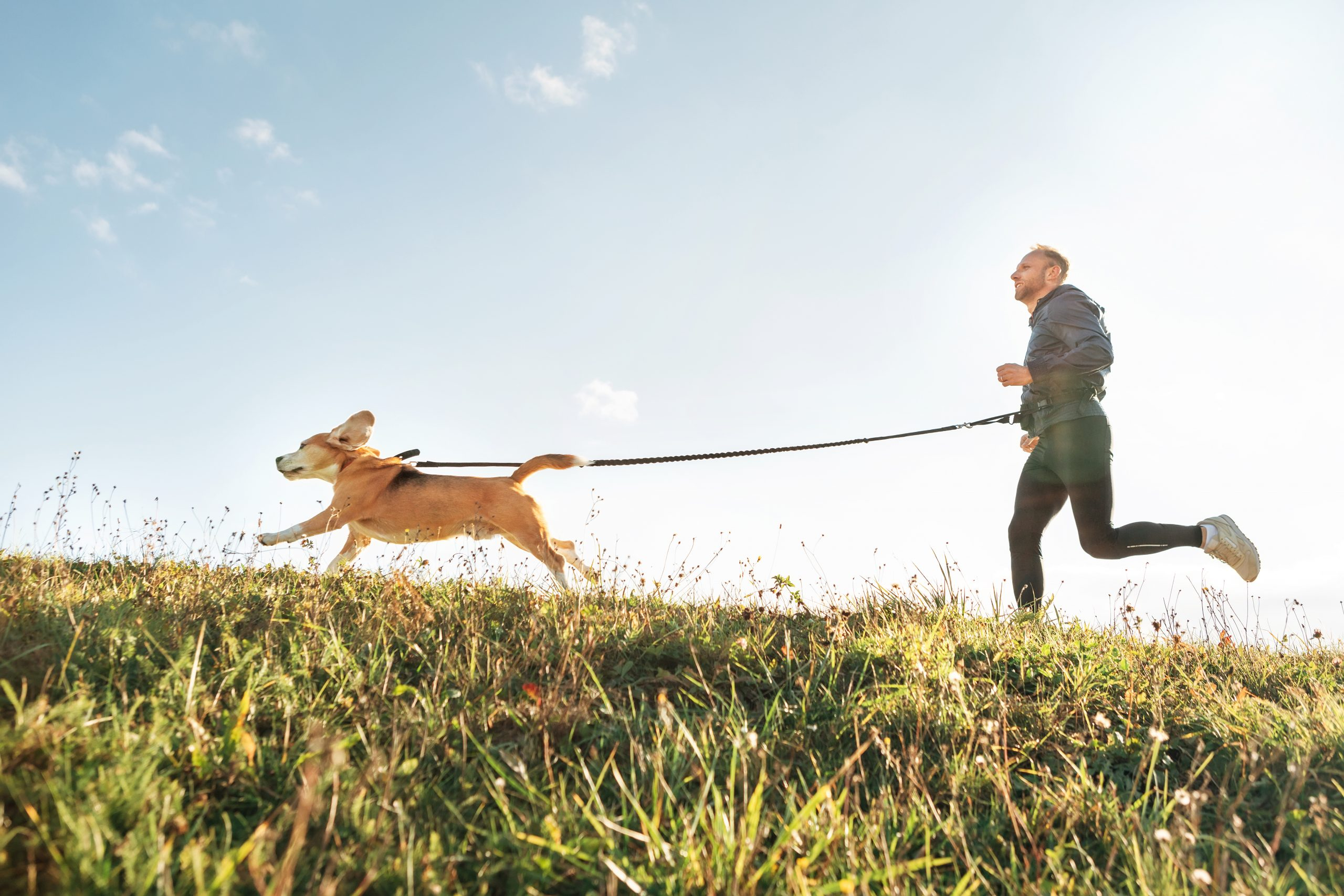 Man jogging with his dog on grass in front of blue sky